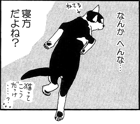 bun1_ashinobi.jpg